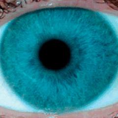 iridologia-iris-aroyo-2
